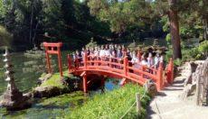 Classe en extérieur pour découvrir la poésie japonaise